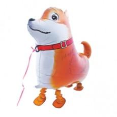 CĂȚEL - DOG SHIBA INU, BALON FOLIE WALKING, 57CM